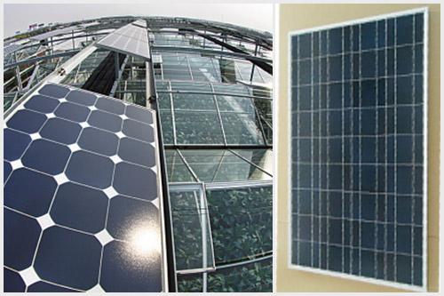 光伏温室单晶硅太阳能电池组件